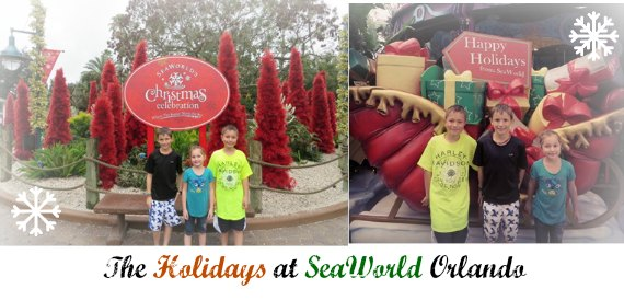 Best events at SeaWorld Orlando