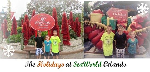 SeaWorld at Christmas