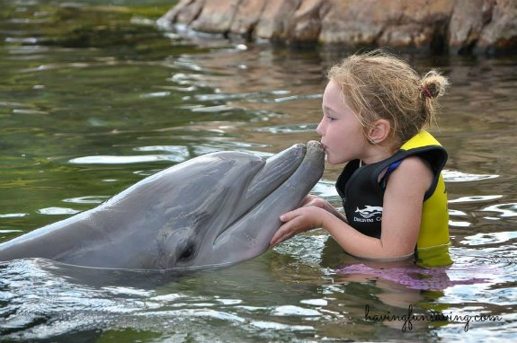 Discovery Cove is The #1 Amusement Park in the WORLD!
