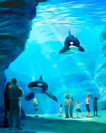 SeaWorld Cares – Learn About The SeaWorld Blue World Project #BlueWorldProject