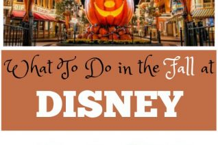 What to do in Disney in the Fall on Food Wine Sunshine and Cooking