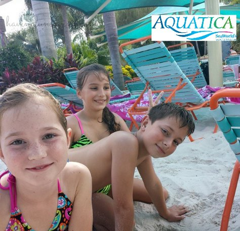 Discounted Aquatica passes for 2014