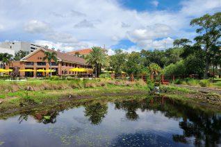 Ulele Tampa Feature