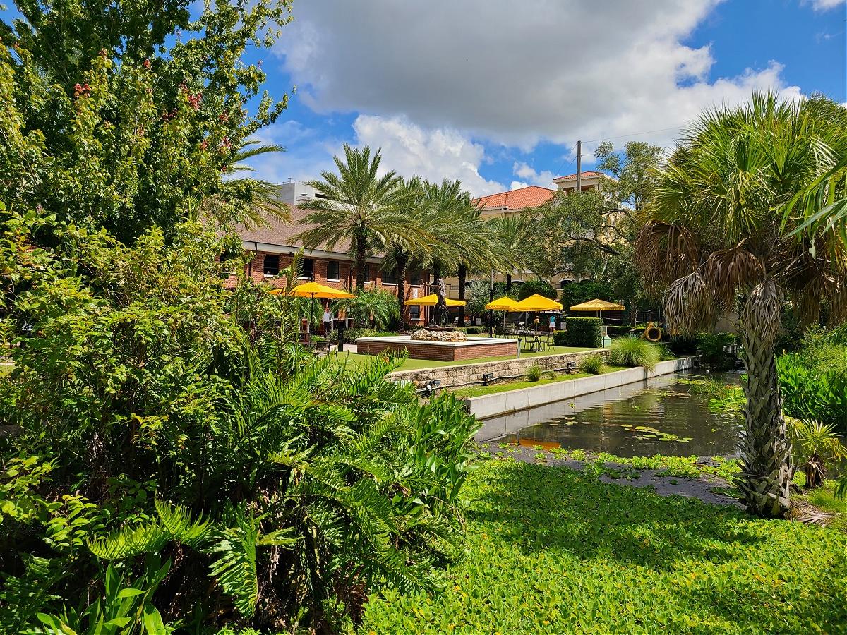 Ulele Tampa Views