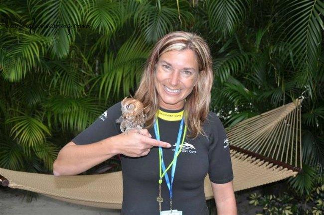 Discovery Cove Orlando Bird Aviary