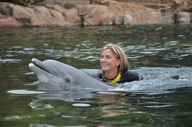 Dolphin swim at Discovery Cove Orlando