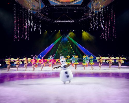 Frozen on Ice in Tampa