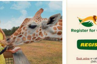 Busch Gardens Summer Camps