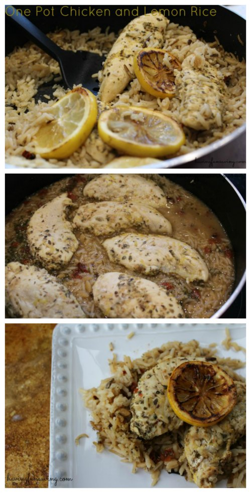 Delicious One Pot Chicken and Lemon Rice
