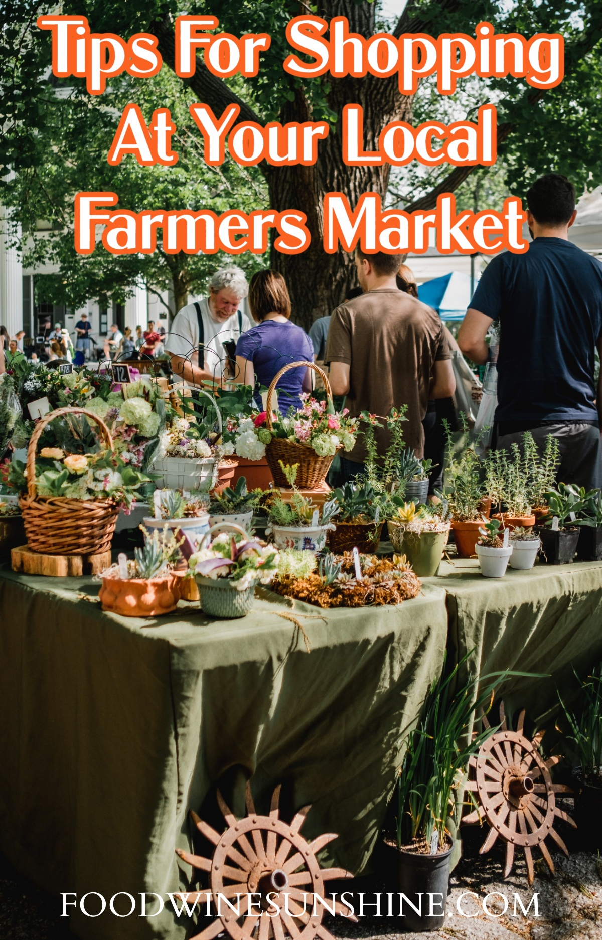 Tips For Shopping At Your Local Farmers Market