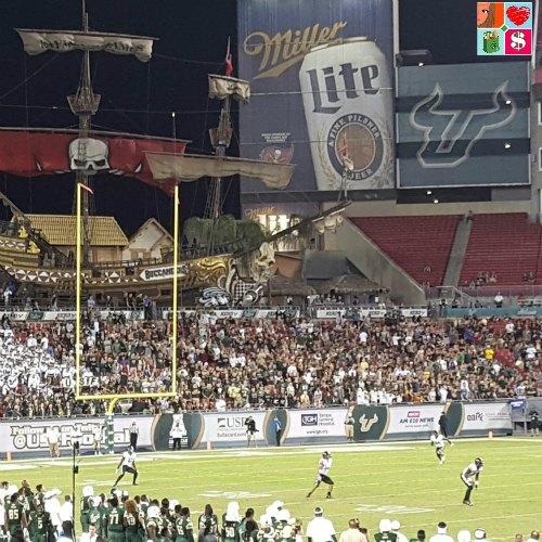 USF Bulls Football game