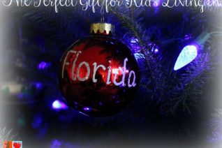 The Perfect Gift for Kids Living in Florida