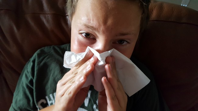 Let Scotties Facial Tissues Help You This Allergy Season