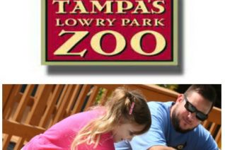 Tampa's Lowry Park Zoo Events on Food Wine Sunshine and Cooking