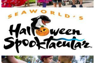 SeaWorld Orlando Spooktacular on Food Wine Sunshine