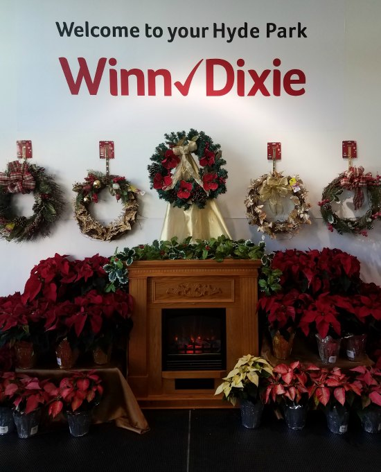 Shopping at Winn-Dixie in Tampa