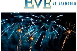 new years eve at seaworld on having fun saving & cooking
