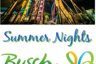 Busch Gardens Tampa Summer Nights
