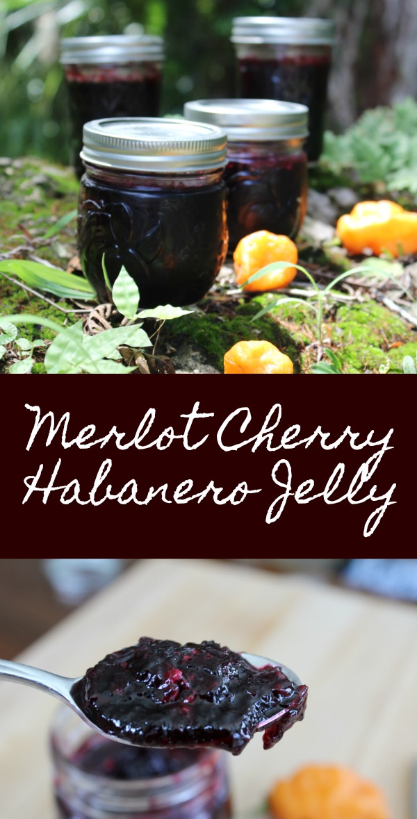 Delicious Cherry Habanero Jelly