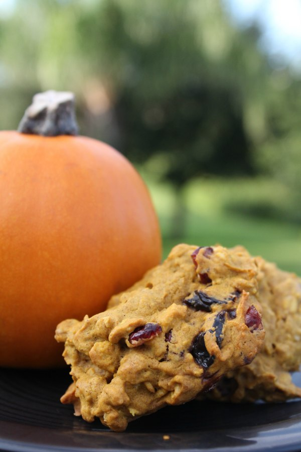 Dried cherry Oatmeal Pumpkin Cookies