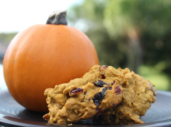 Best Oatmeal Pumpkin Cookies