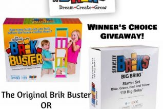 Strictly Briks Winner's Choice Giveaway