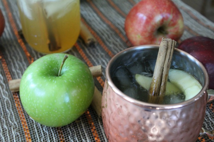 Tasty Apple Cider Mule