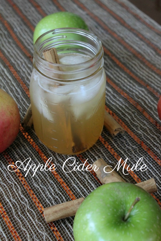 Tasty Apple Cider Moscow Mule