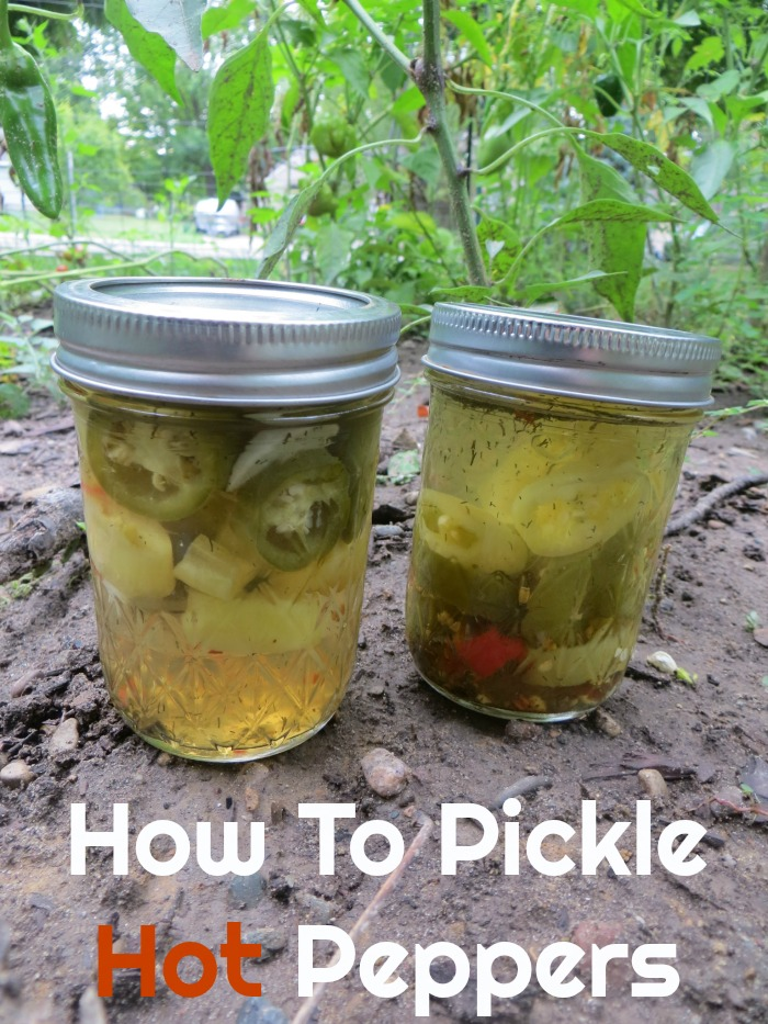 How To Pickle Hot Peppers - Food Wine Sunshine