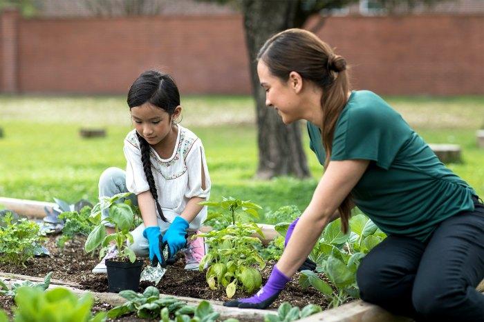 La Petite Academy gardening program