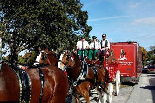 Tampa Winn-Dixie Customer Wins Budweiser Experience Of A Lifetime - Food Wine Sunshine
