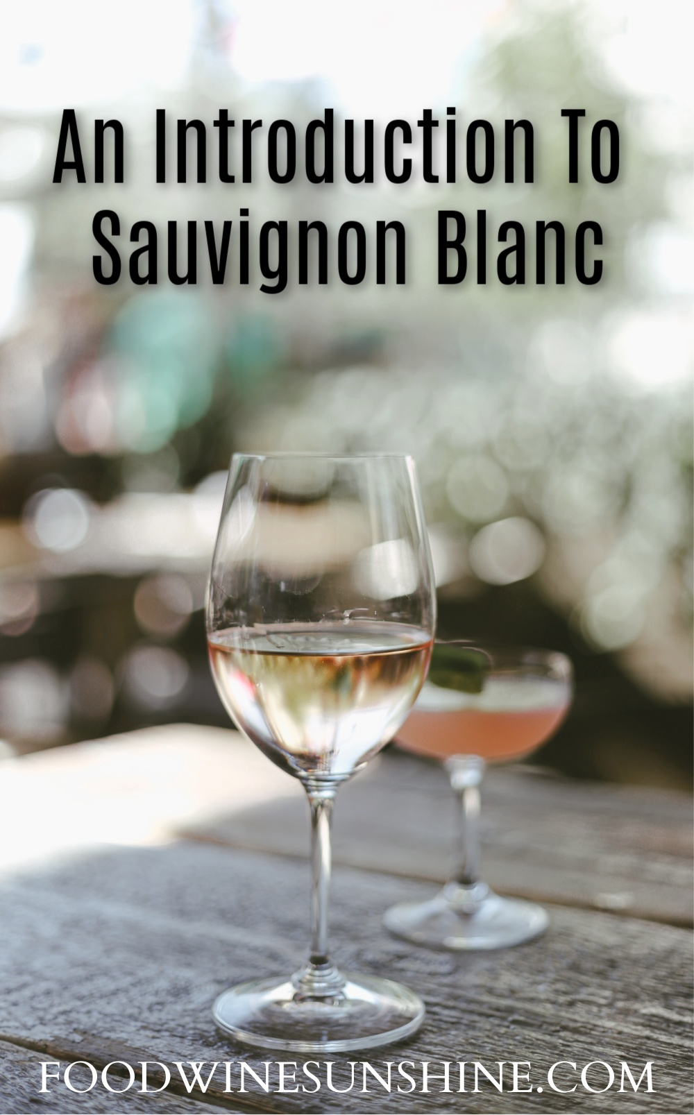 Introduction To Sauvignon Blanc
