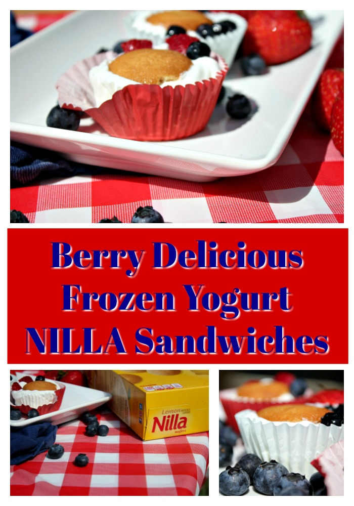Berry Frozen Yogurt NILLA Sandwiches