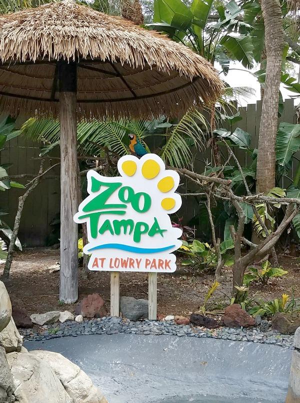 Lowry park zoo Roaring Springs Ride details