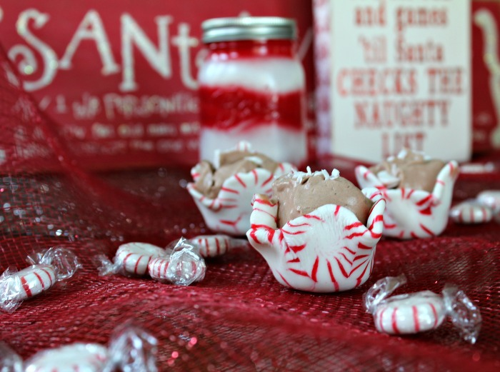 How to make Peppermint Candy Shot Glasses