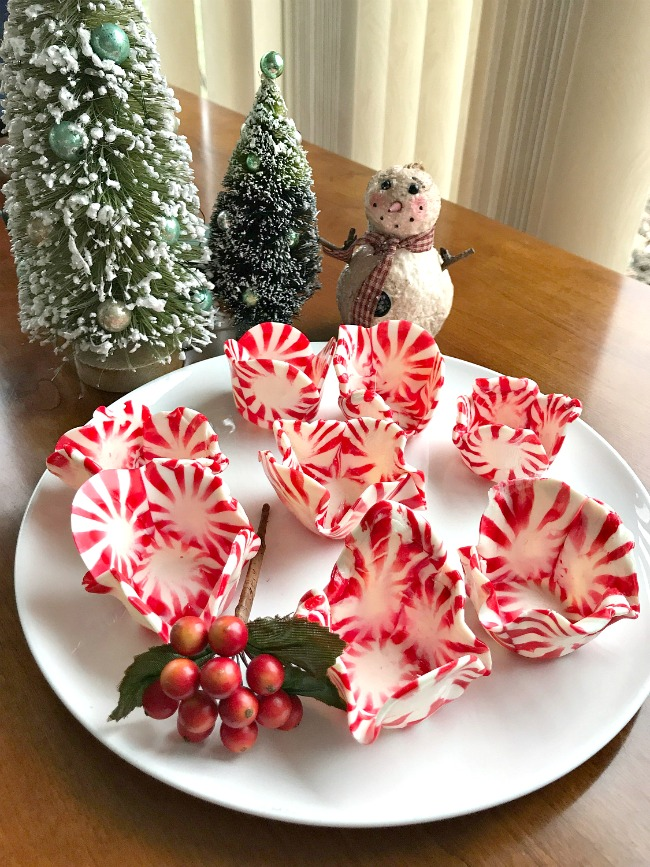 Peppermint Candy Shot Glasses