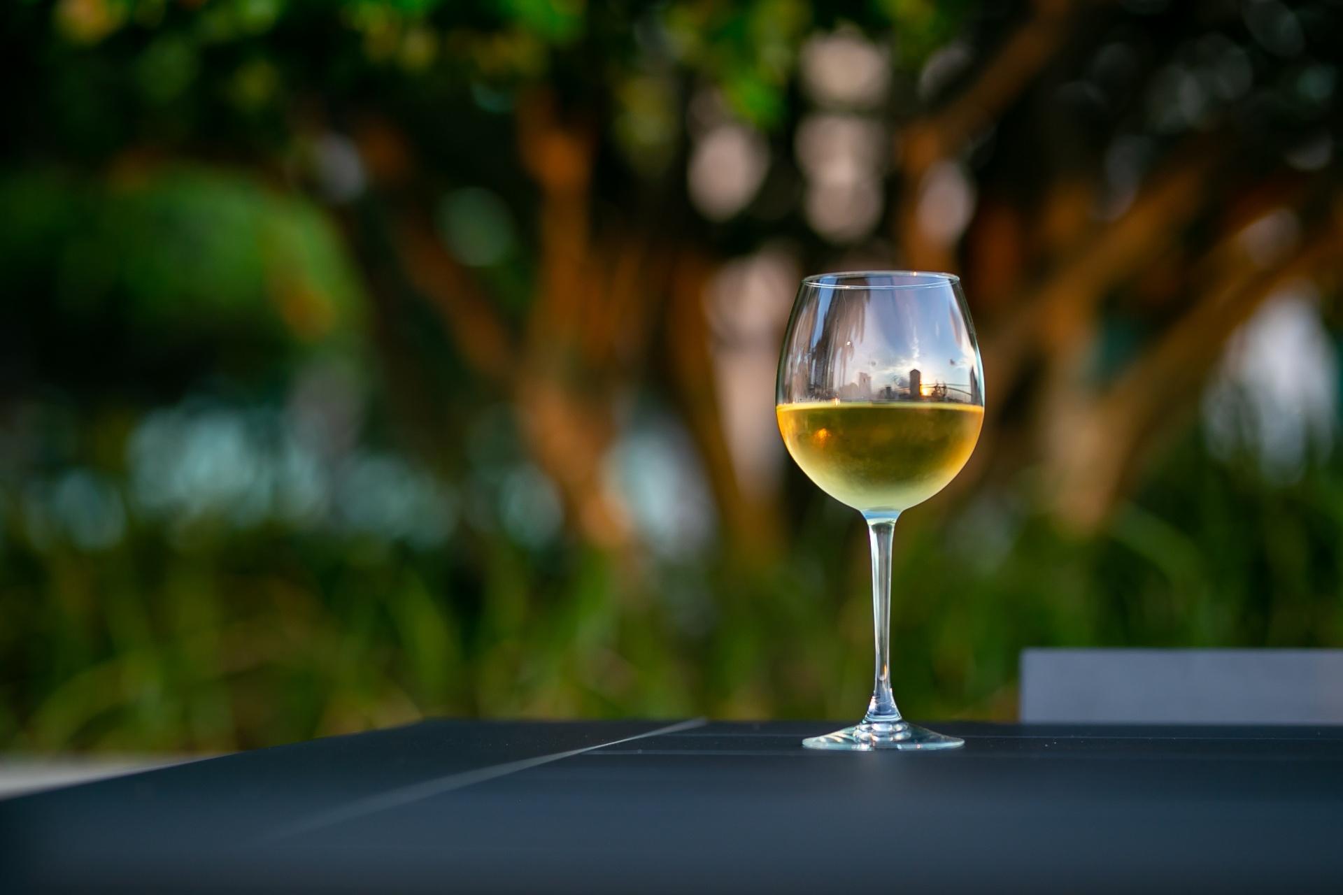 Intro to Chardonnay