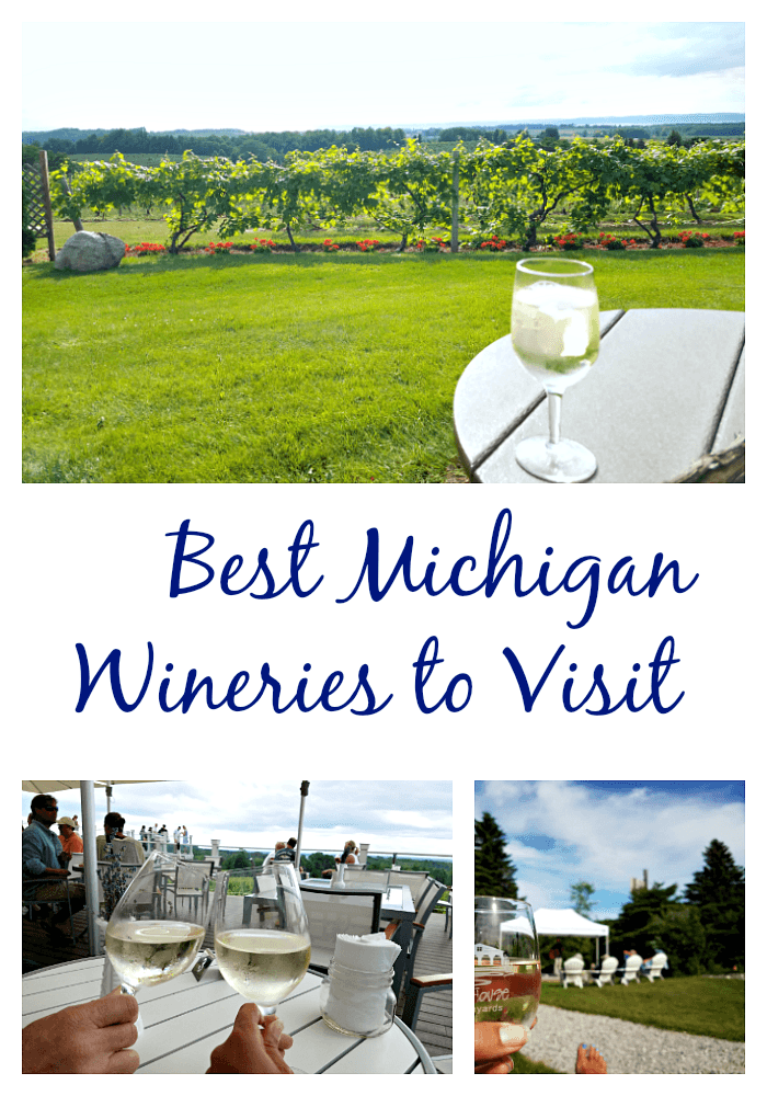 Top Northern Michigan Wineries to Visit