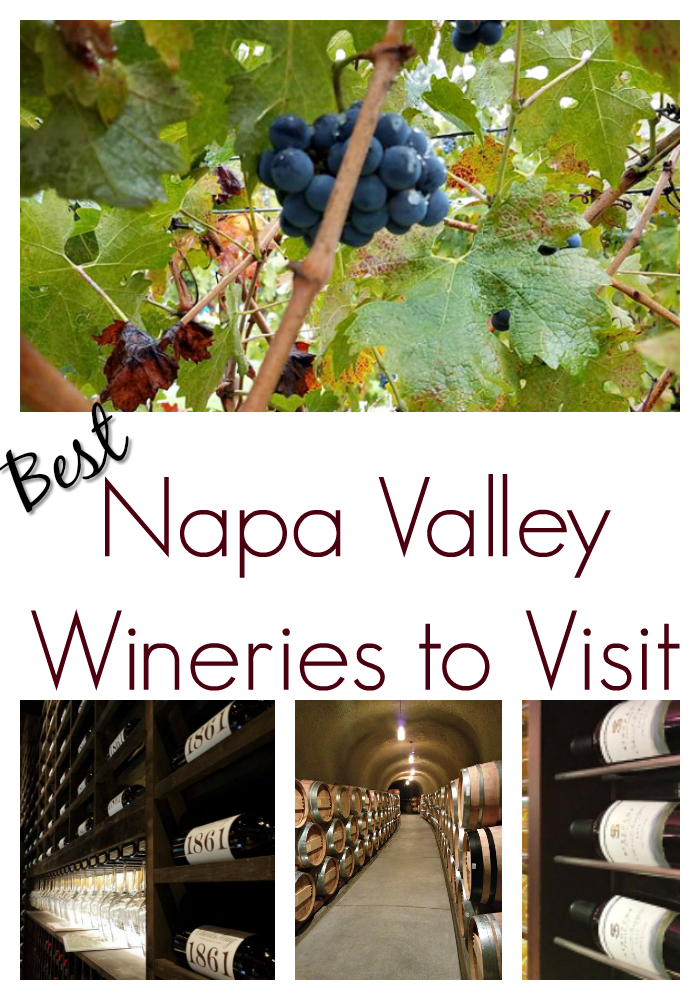 Top Wineries to Visit in Napa Valley