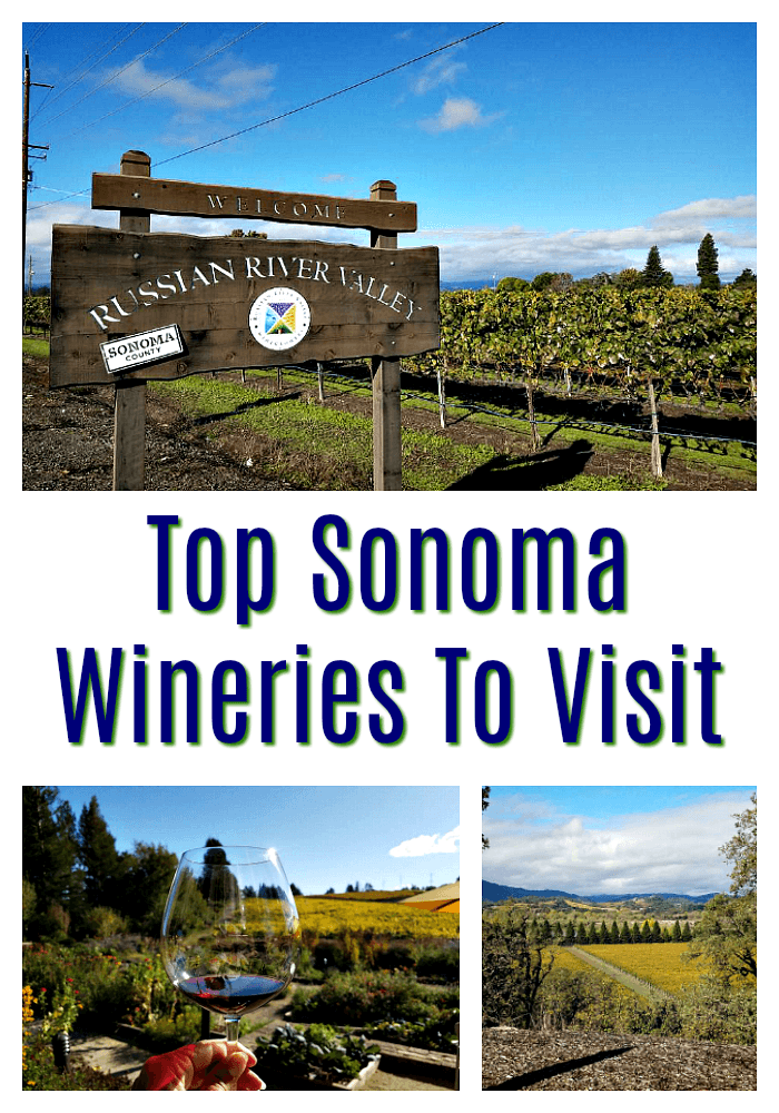 Top Sonoma Wineries to Visit