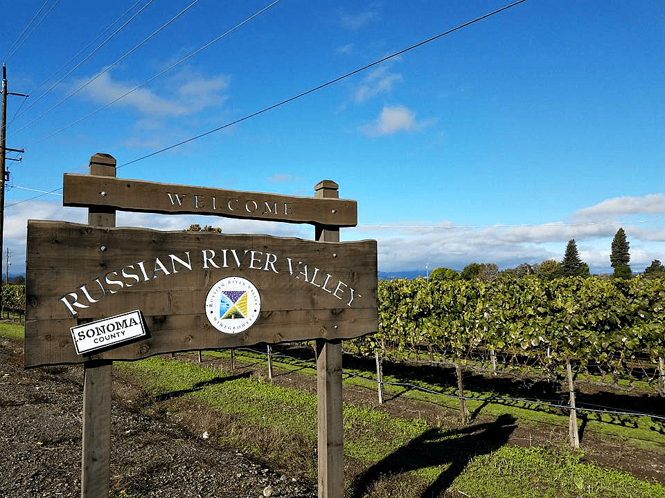 Wineries to visit in Sonoma County