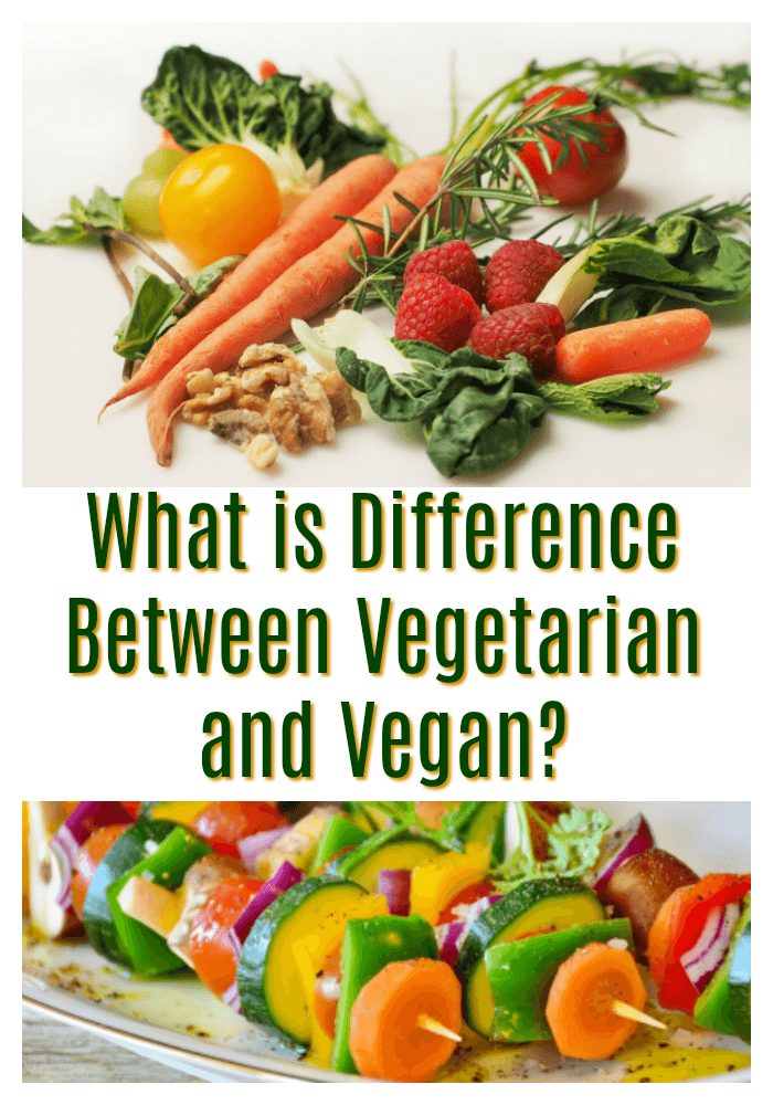 What is Difference Between Vegetarian and Vegan?