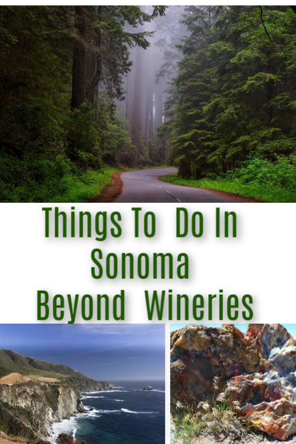 Top Things To Do In Sonoma