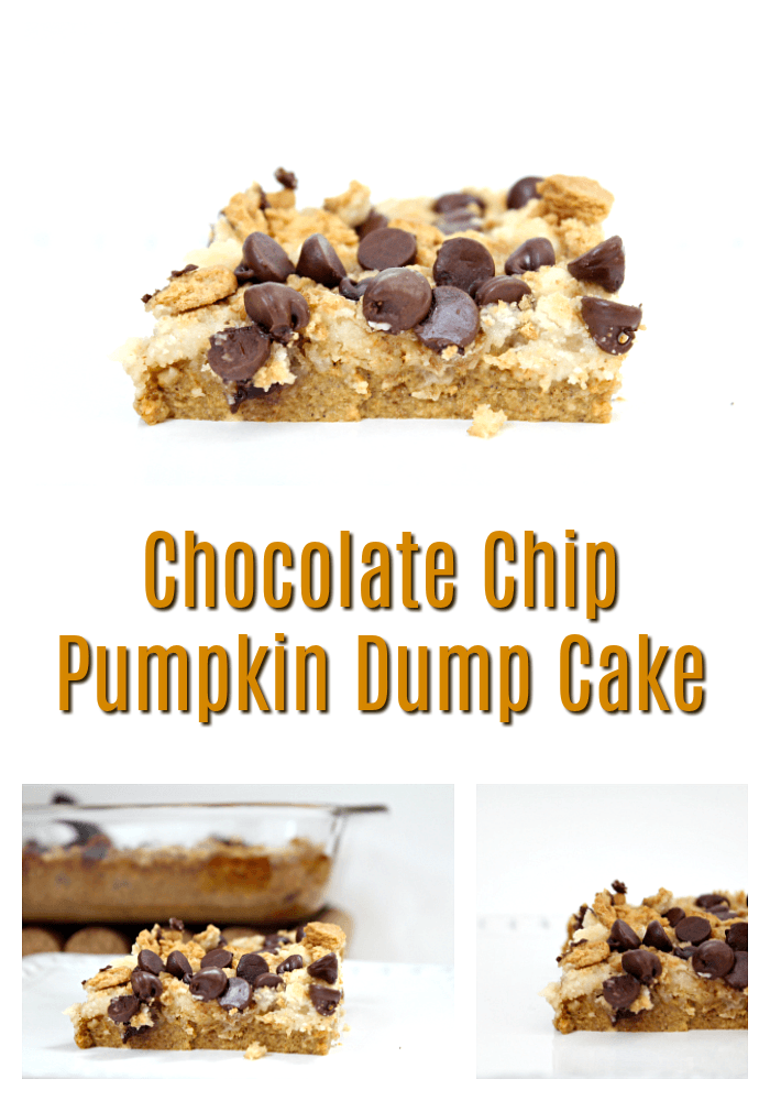 Easiest Chocolate Chip Pumpkin Dump Cake