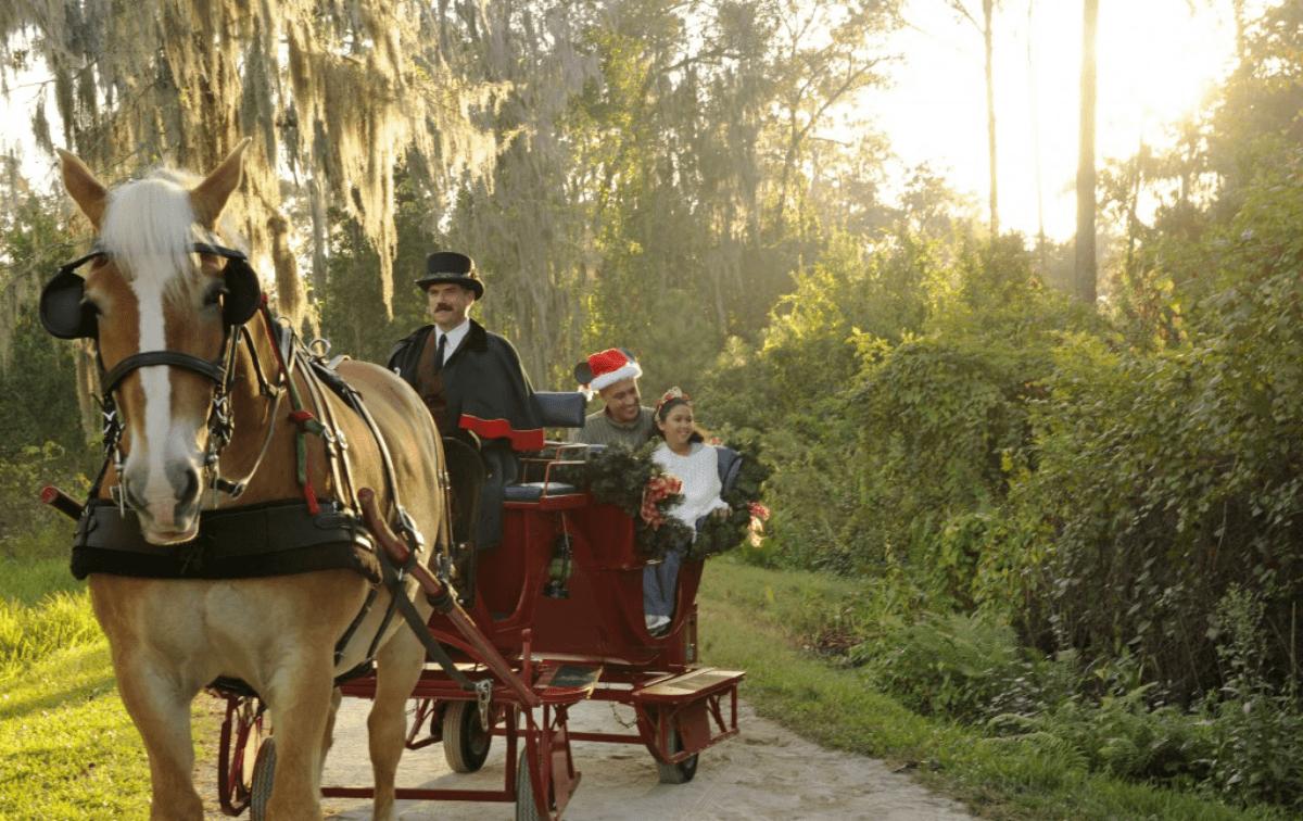Best Activities at Disney's Fort Wilderness Campground