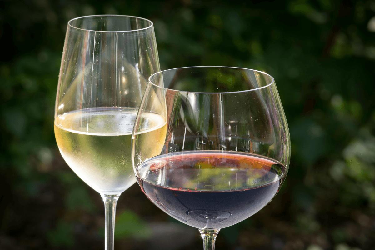 Popular Wine Regions Around The World