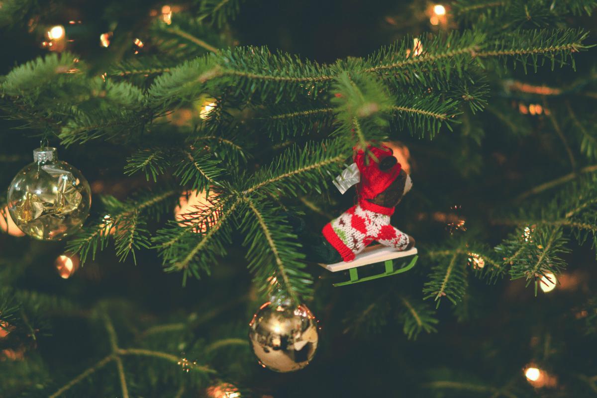 Reasons to Buy A Real Christmas Tree
