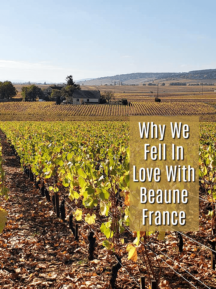 Top Reasons To Visit Beaune France