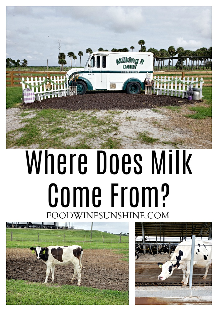 Where Does Milk Come From In Florida?