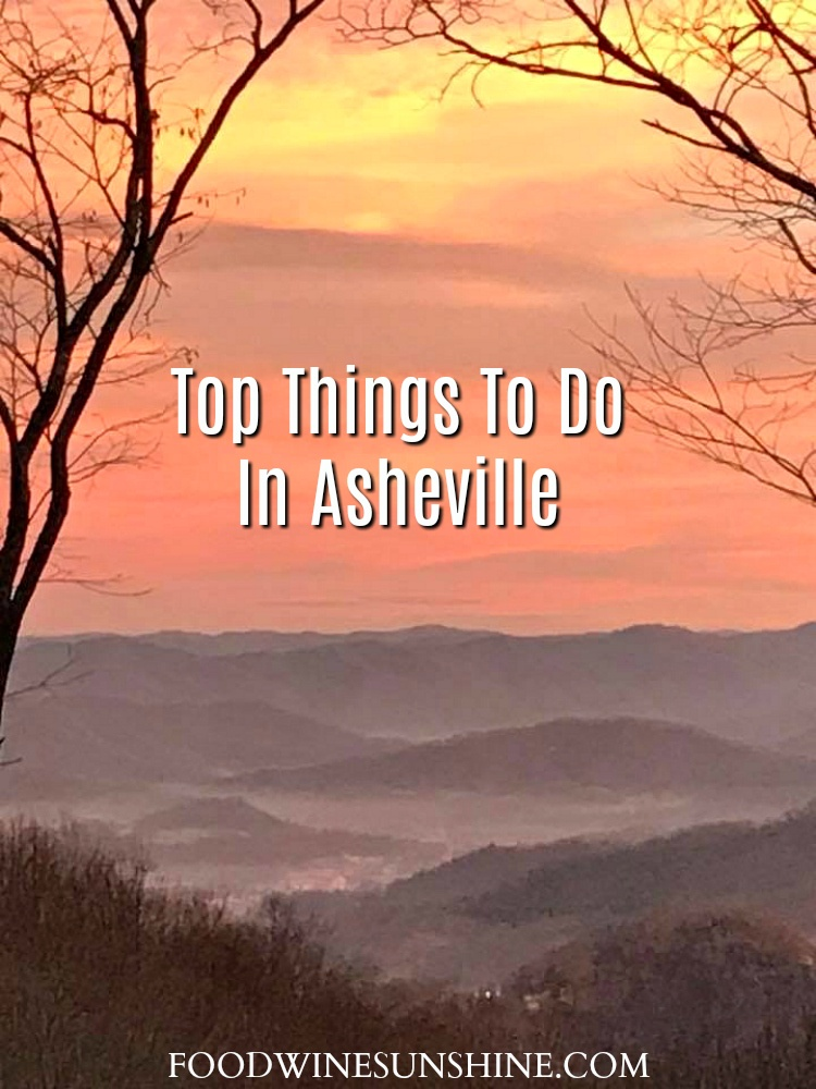 Top Things To Do In Asheville with kids